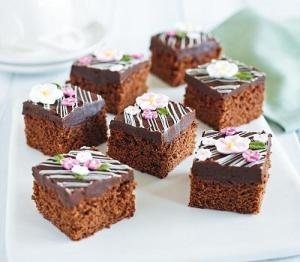 fudgy-chocolate-squares